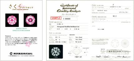 グレーディングレポート&保証書